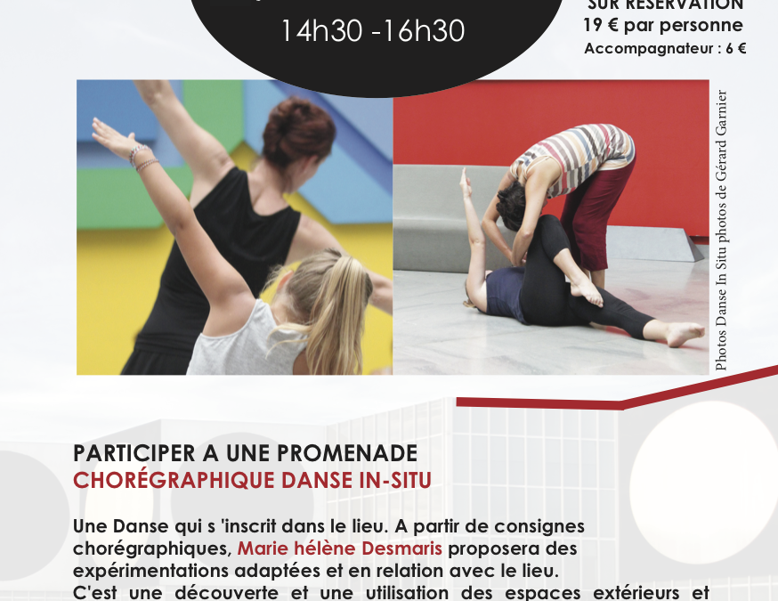 Atelier Danse in Situ Fondation Vasarely – 31 août 2017